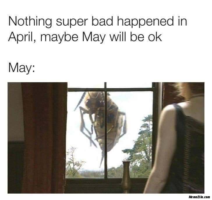 Nothing super bad happened in april Maybe may will be ok Meanwhile may meme