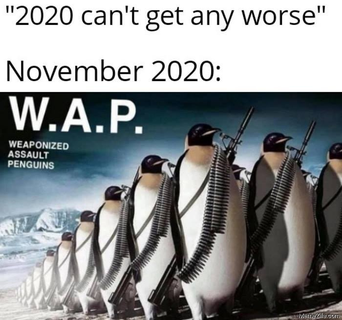 November 2020 cant get any worse November WAP weaponized assault penguins meme