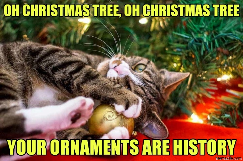 Oh christmas tree oh christmas tree Your ornaments are history meme