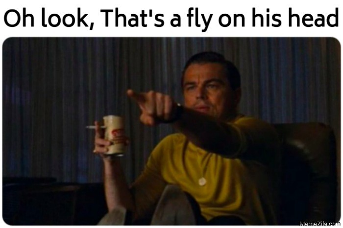Oh look Thats a fly on his head meme