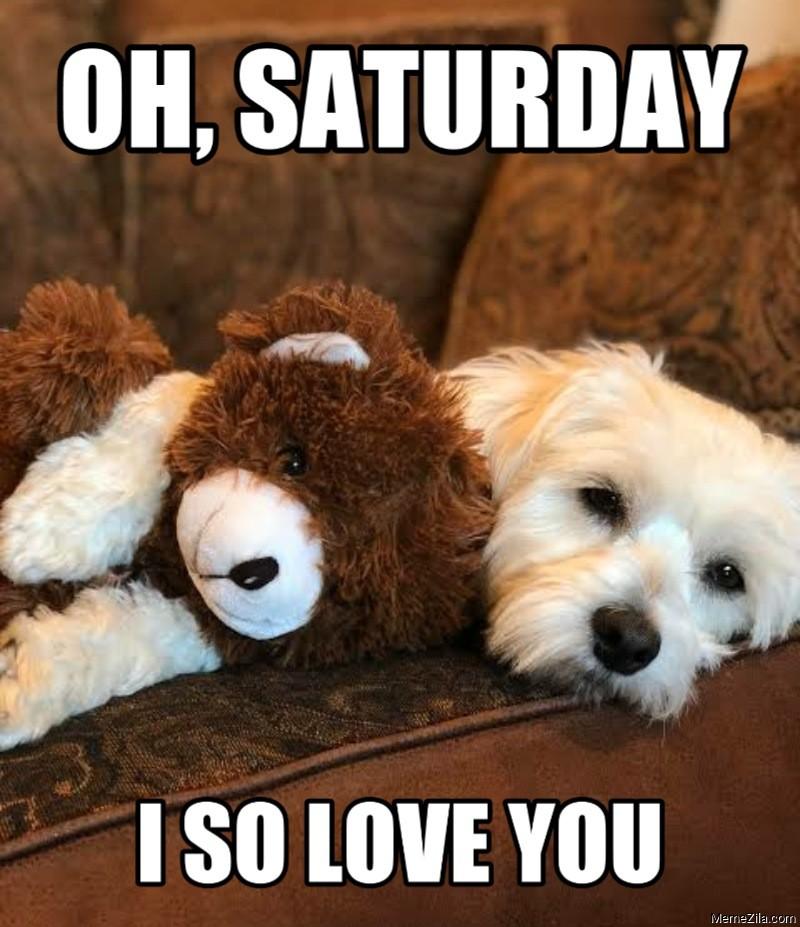 Oh saturday I so love you Dog meme