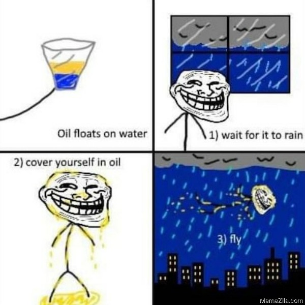 Oil floats on water Wait for it to rain Cover yourself in oil Fly meme