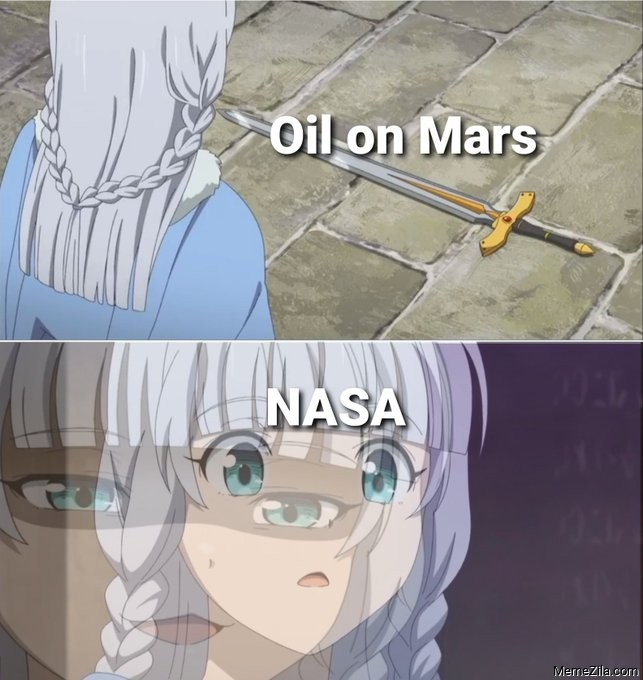 Oil on mars Meanwhile NASA meme
