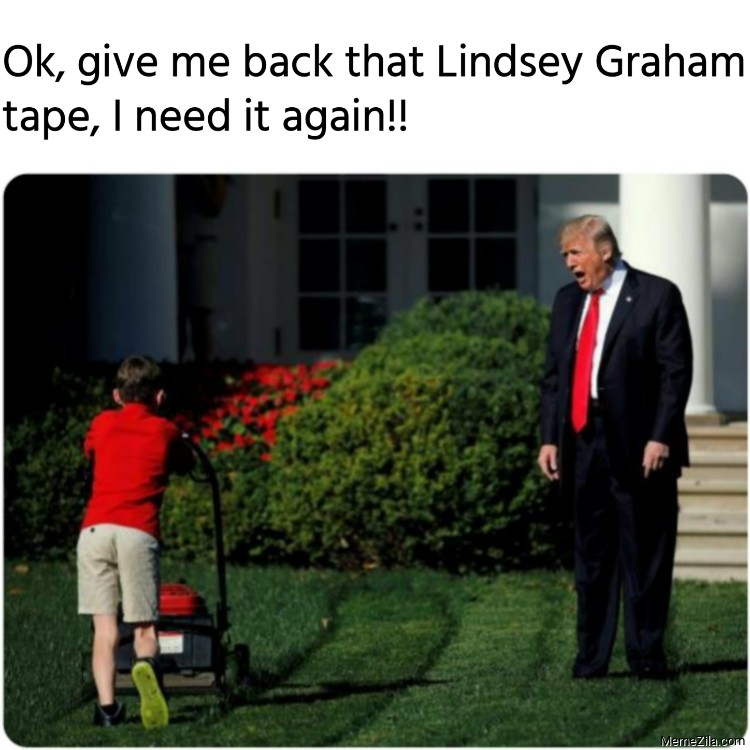 Ok give me back that Lindsey Graham tape I need it again meme