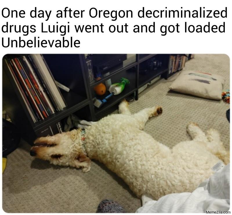 One day after Oregon decriminalized drugs Luigi went out and got loaded Unbelievable meme