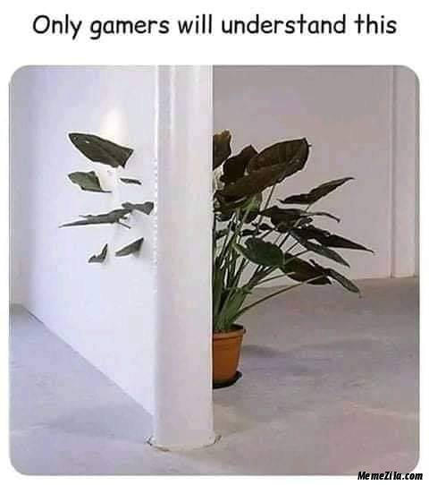 Only gamers will understand this meme