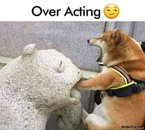 Over acting meme - MemeZila.com