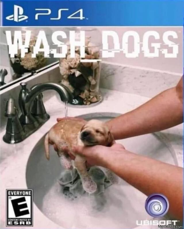 PS4 Wash dogs meme