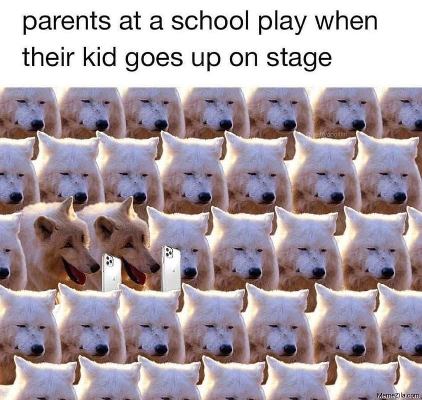 Parents at school play when their kid goes up on stage meme