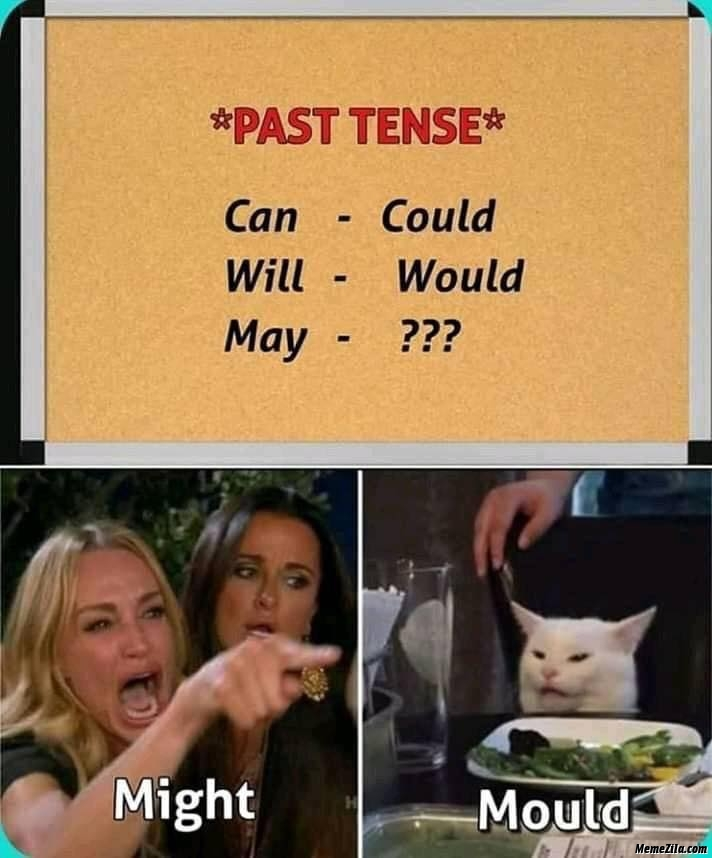 Past tense can could will would may might mould meme