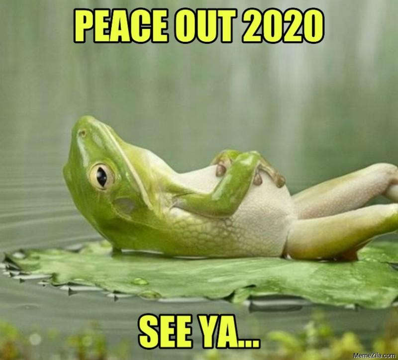 Peace out 2020 See ya meme