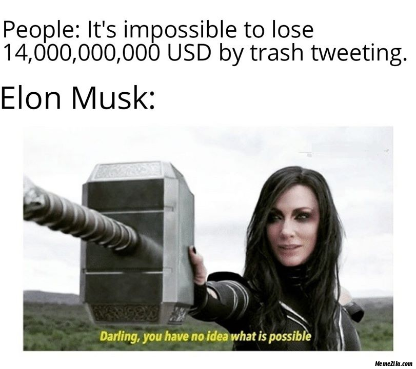 People Its impossible to lose 14000000000 USD by trash tweeting Meanwhile Elon musk meme