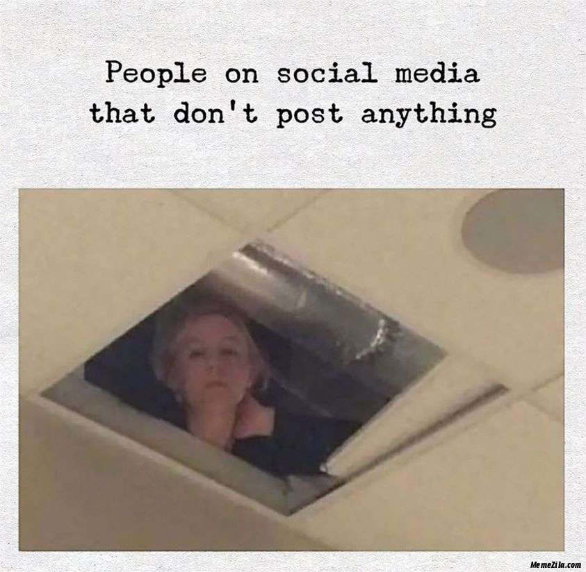 People on social media that dont post anything meme