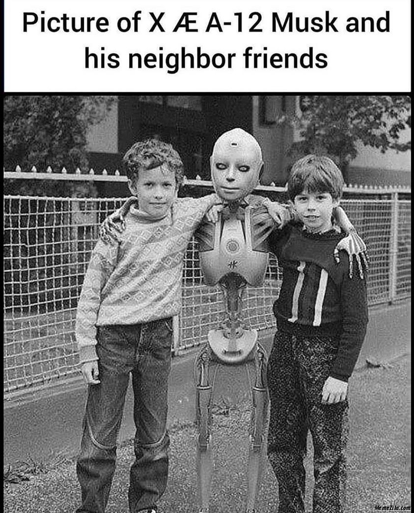 Picture of Xæa-12 Musk and his neighbour friends meme