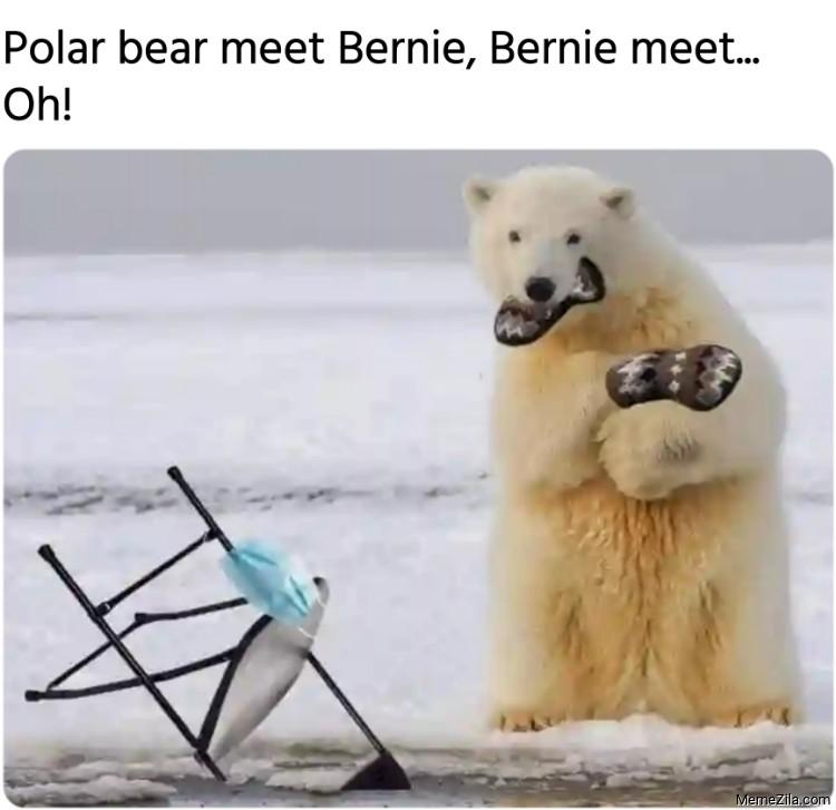 Polar bear meet Bernie Bernie meet meme