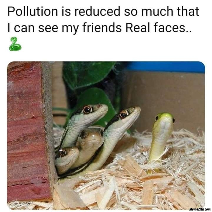 Pollution is reduced so much that I can see my friends real faces meme