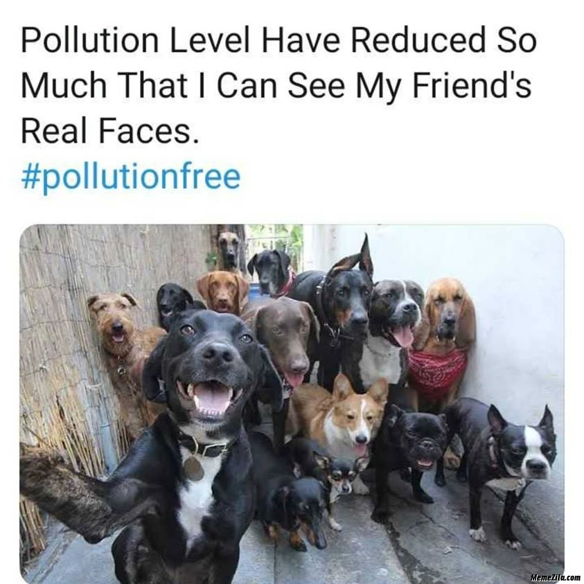Pollution level have reduced so much That I can see my friends real faces meme