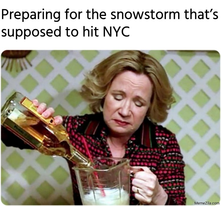 Preparing for the snowstorm thats supposed to hit NYC meme