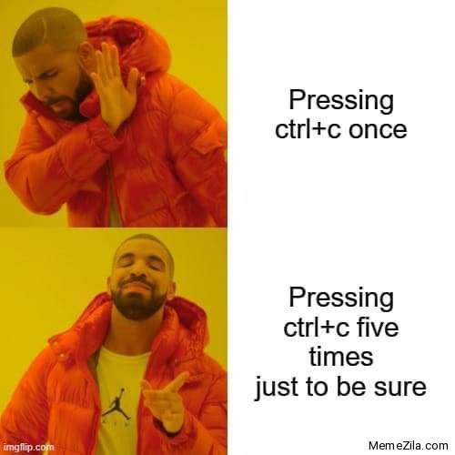 Pressing Control C once vs Pressing Control C 5 times to just be sure meme