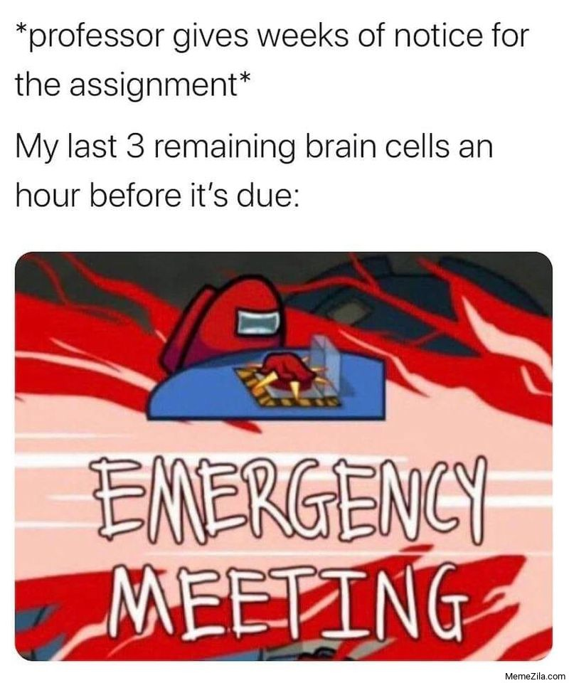 Professor give weeks of notice for assignment My last three remaining brain cells emergency meeting meme