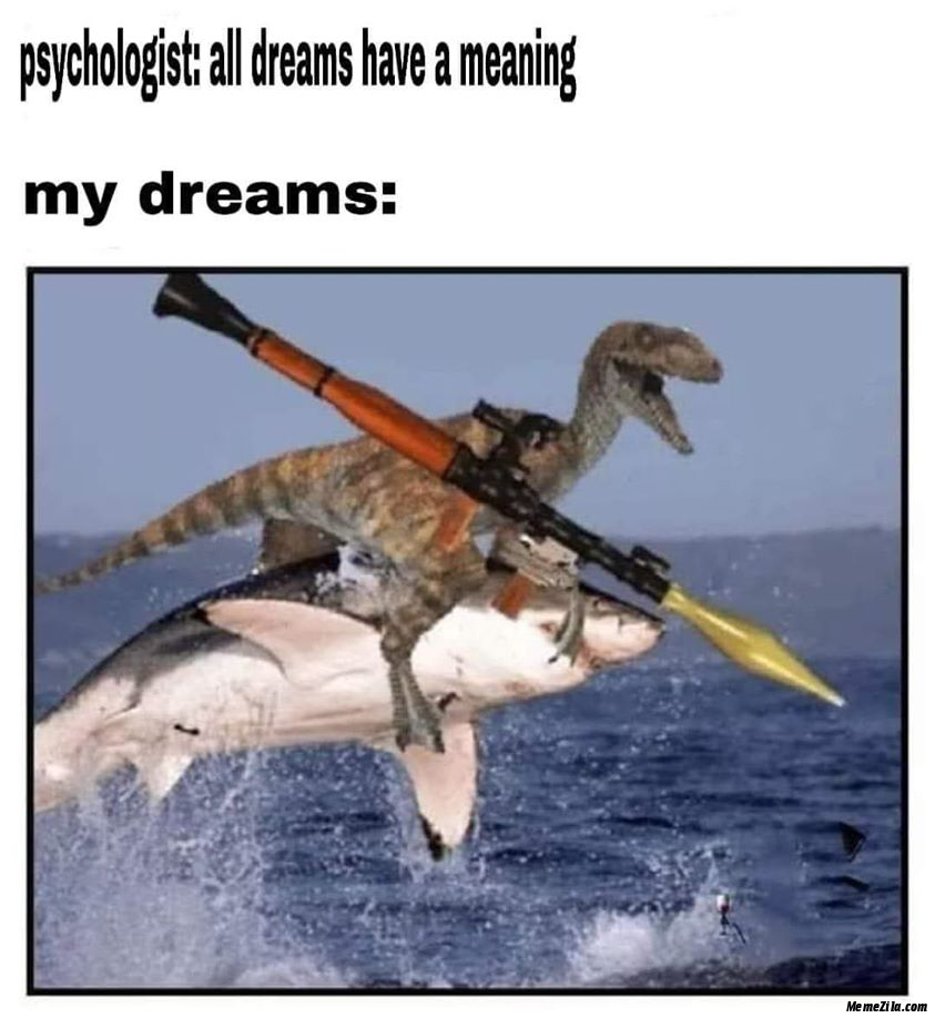 Psychologist All dreams have a meaning Meanwhile my dreams meme
