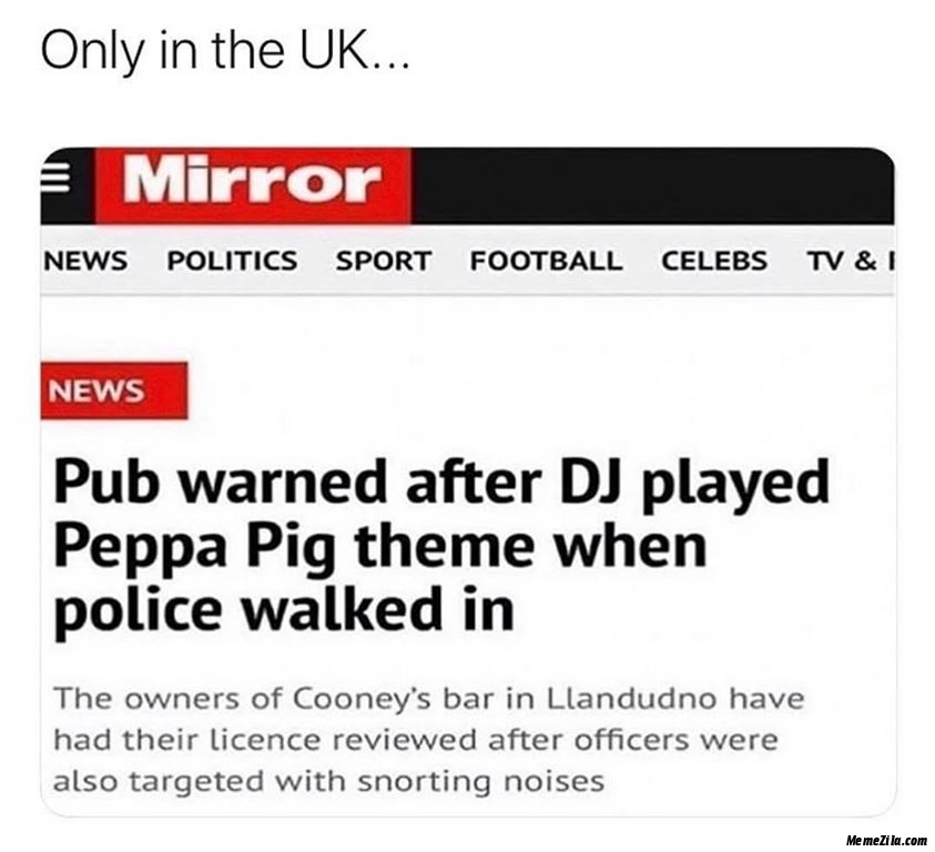 Pub warned after DJ played peppa pig theme when police walked in meme