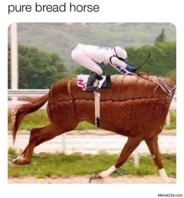 Pure bread horse meme