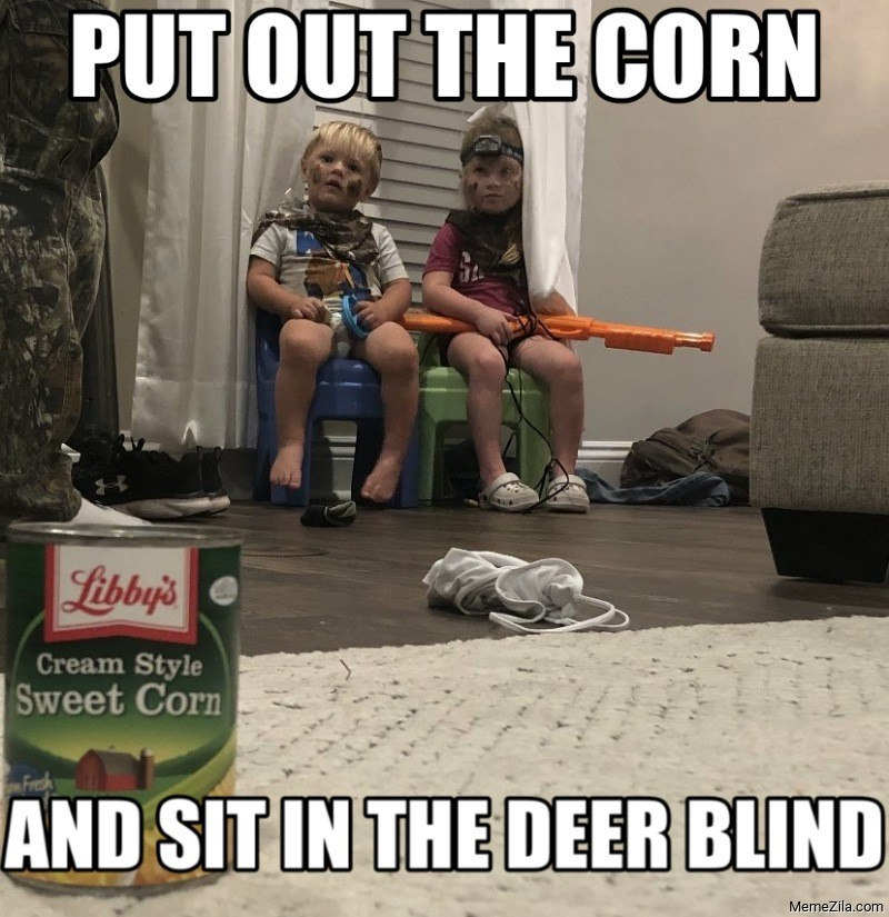 Put out the corn and sit in the deer blind meme