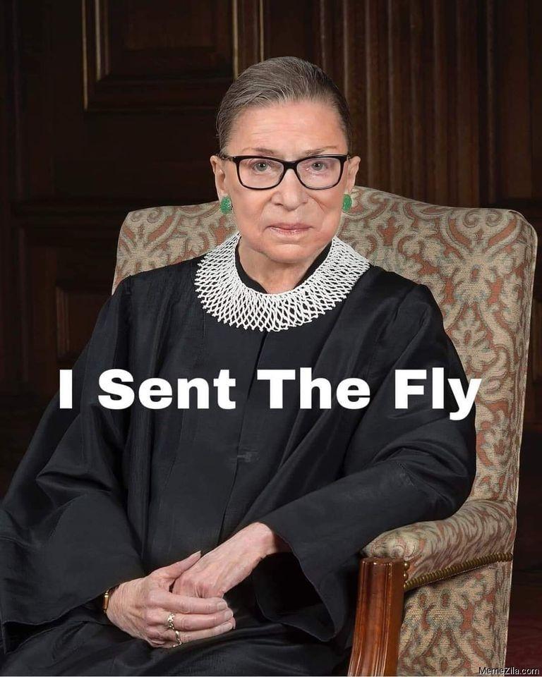 RBG I sent the fly meme
