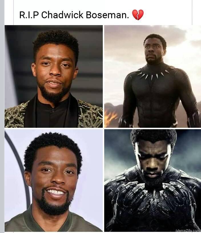 RIP Chadwick Boseman meme
