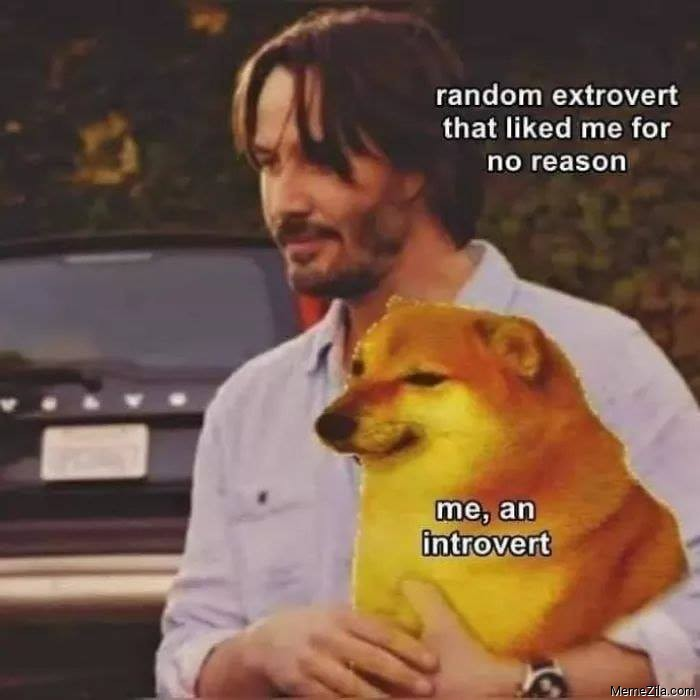 Random extrovert that liked me for no reason Me an introvert meme