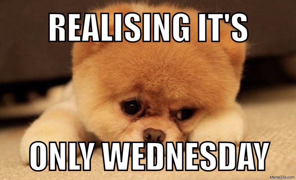 Realising its only wednesday meme