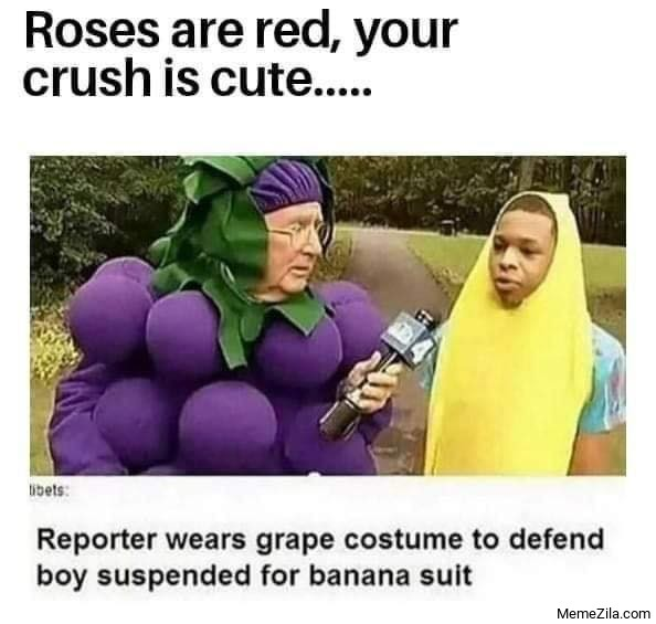 Reporter wears grape costume to defend boy suspended for banana suit meme