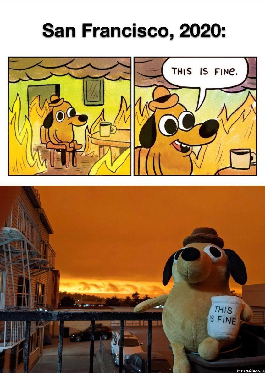 San Francisco 2020 This is fine meme - MemeZila.com