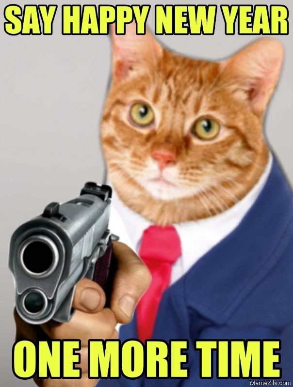 Say happy new year one more time cat meme
