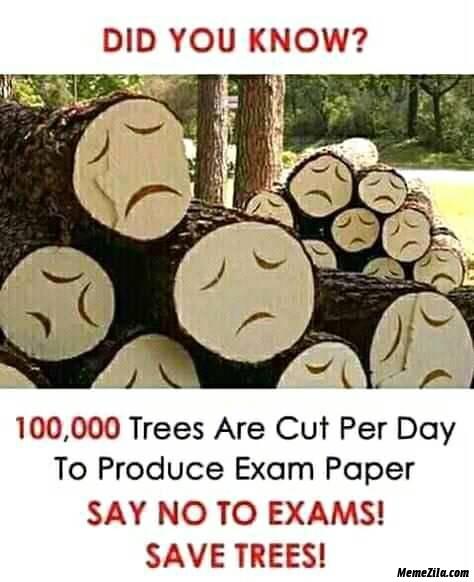 Say no to exams save trees meme
