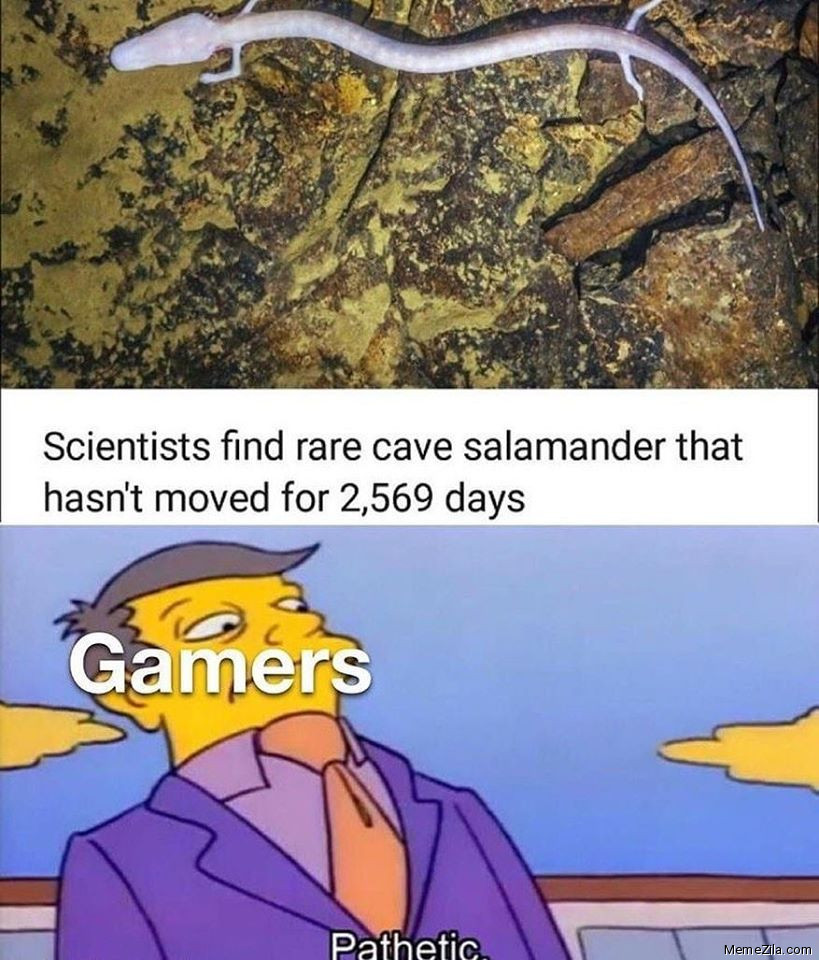 Scientists found rare cave salamander that hasnt moved for 2569 days Meanwhile gamers Pathetic meme