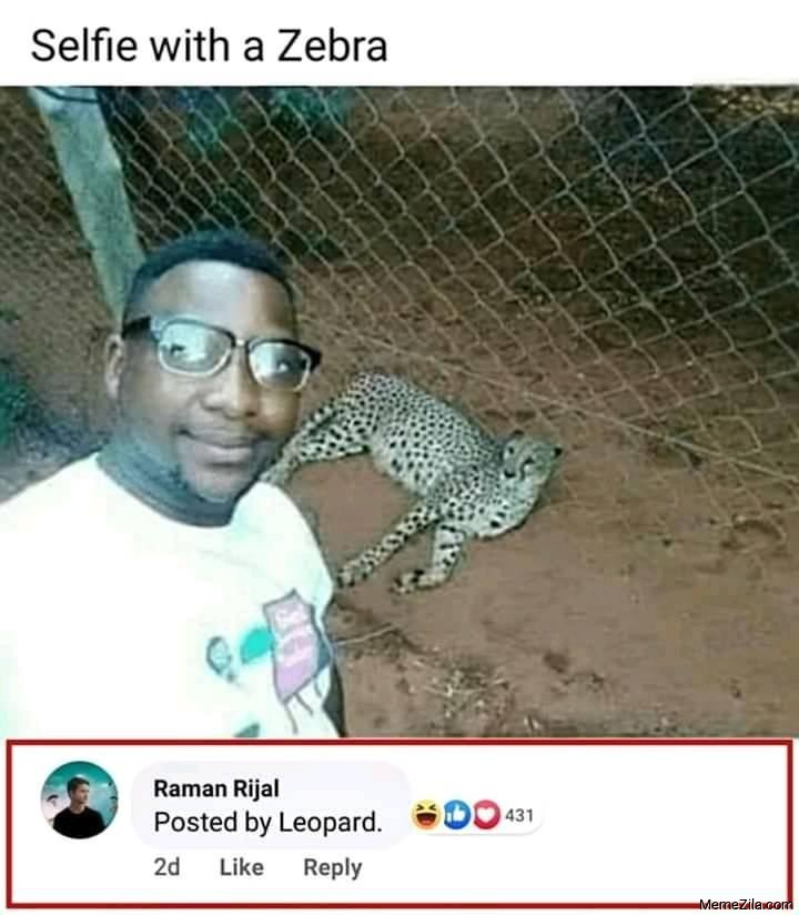 Selfie with a zebra Posted by a leopard meme
