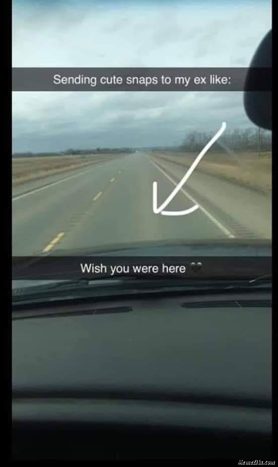 Sending cute snaps to my ex be like Wish you were here meme