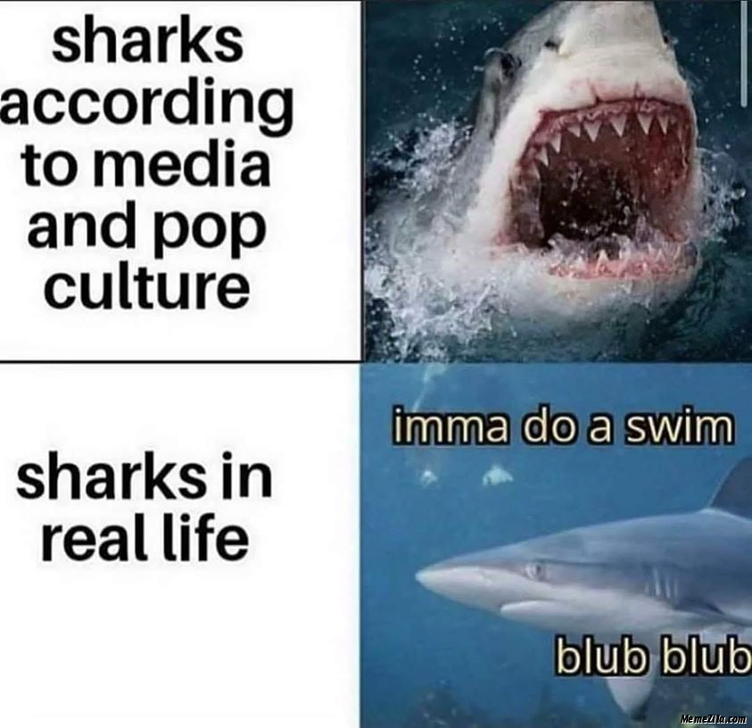 Sharks according to media and pop culture vs Sharks in real life meme