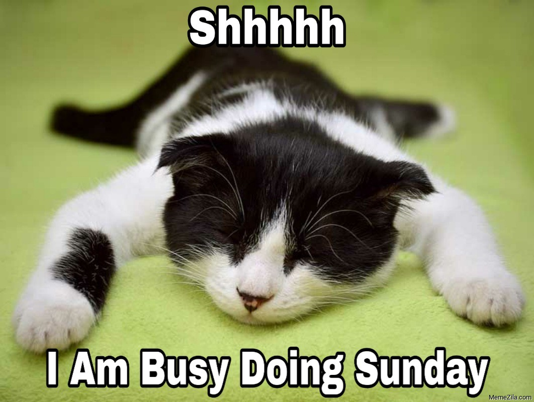 Shhhhh Im busy doin Sunday meme