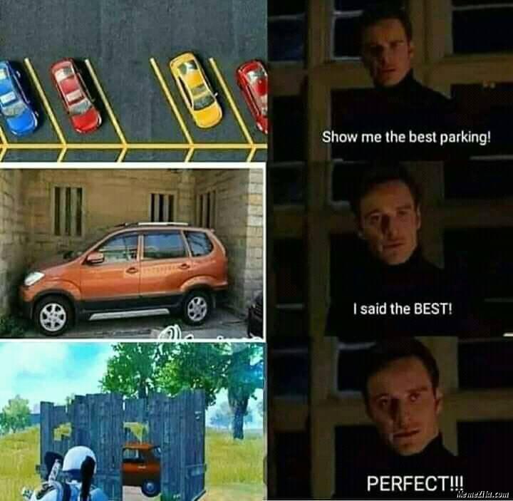 Show me the best parking meme