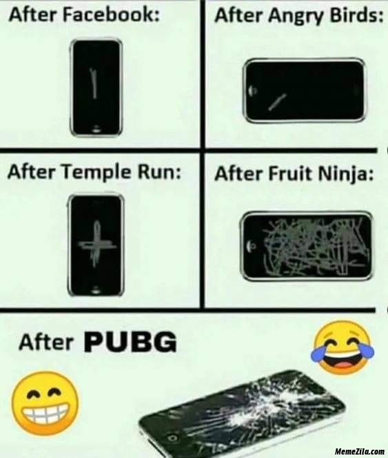 Smartphone after facebook after angry birds after temple run after fruit ninja after pubg meme