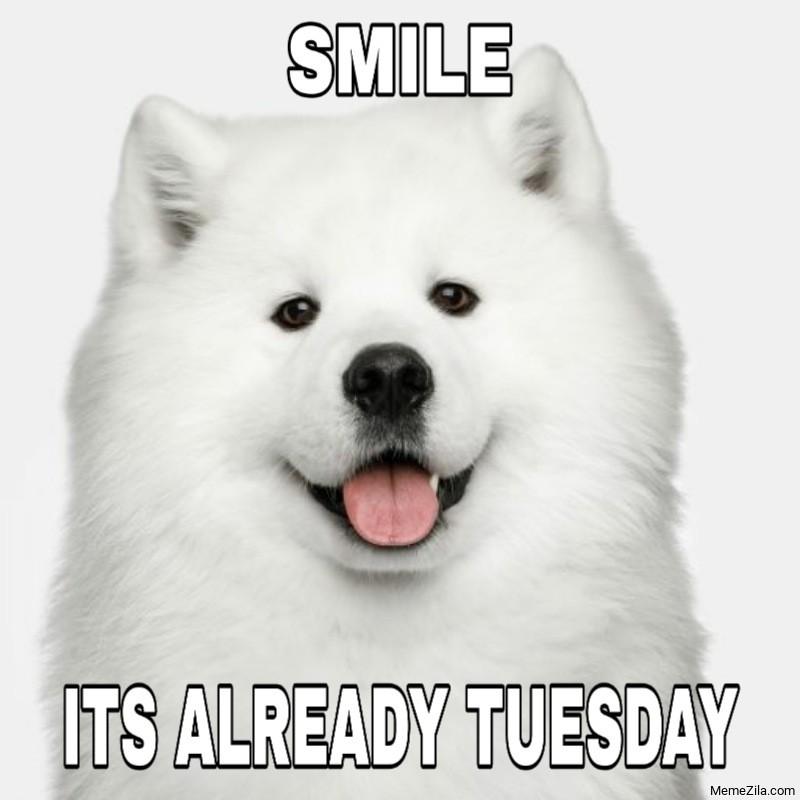 Smile Its already Tuesday meme