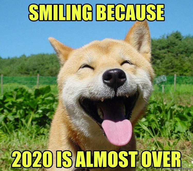 Smiling because 2020 is almost over meme