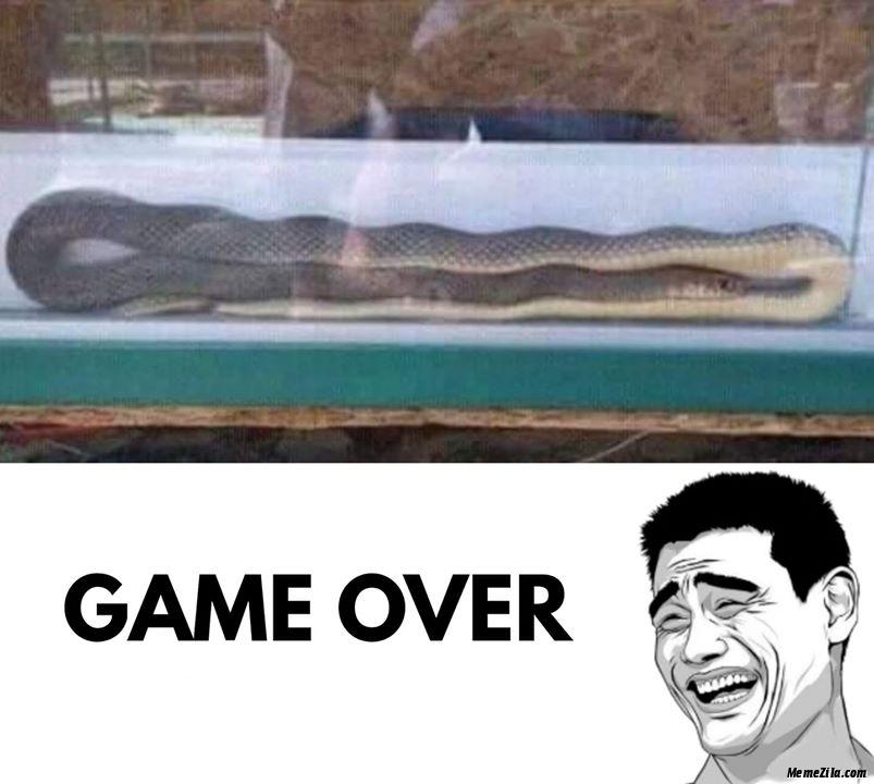 Snake game over meme