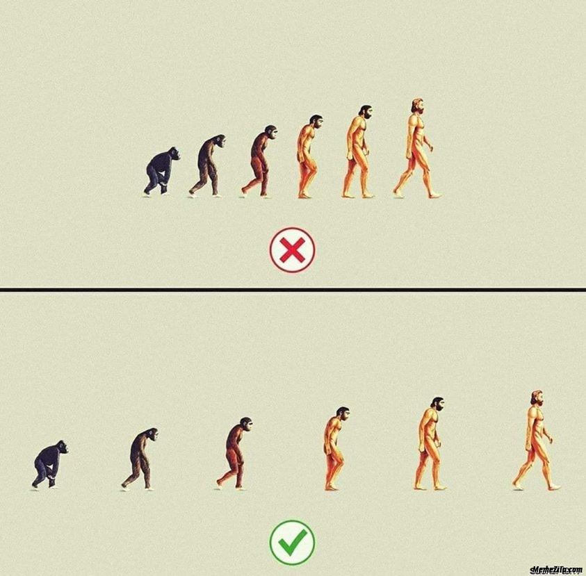 Social distancing evolution meme
