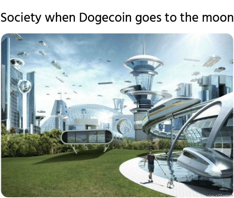 Society when Dogecoin goes to the moon meme