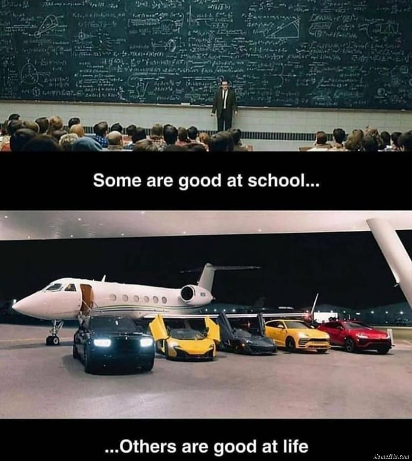 Some are good at school Others are good at life meme