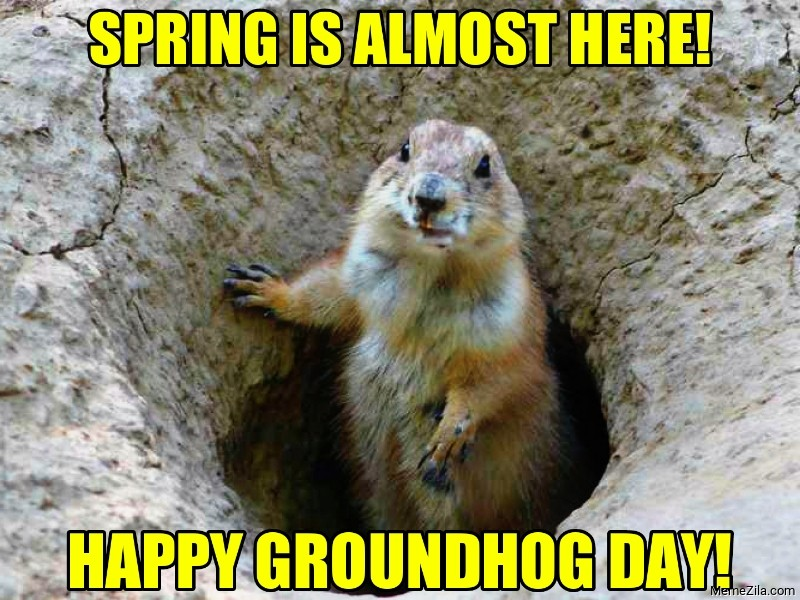 Spring is almost here Happy groundhog day meme